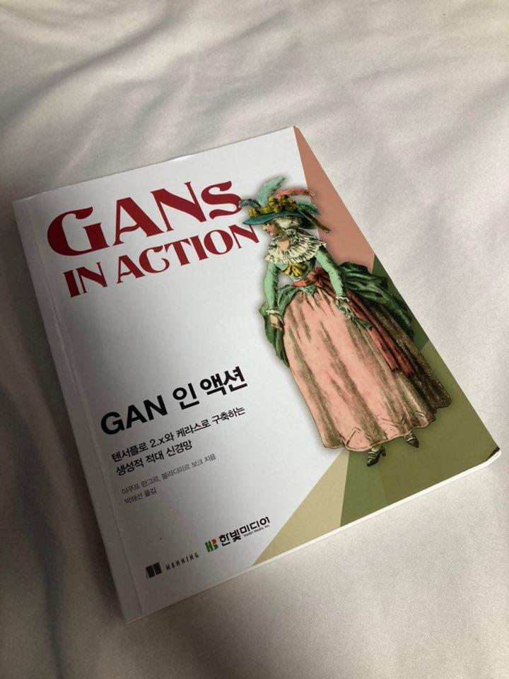 GAN 인 액션.jpg