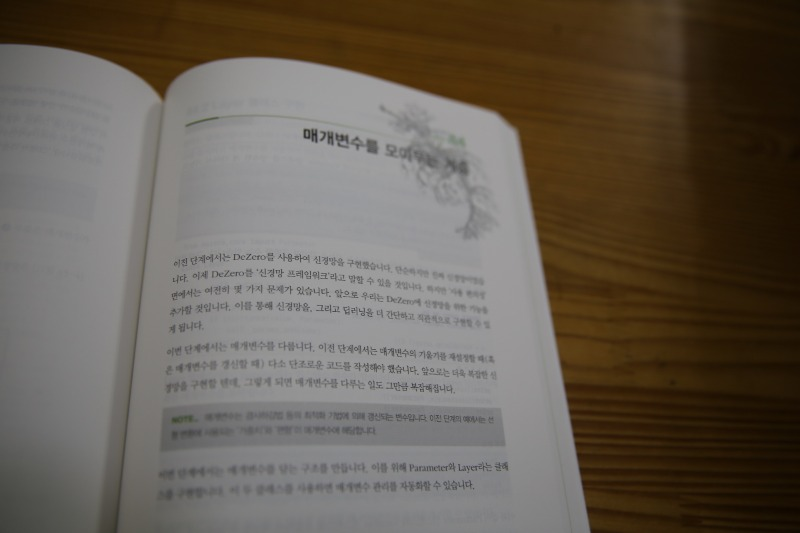 MG0A9089_resize.JPG